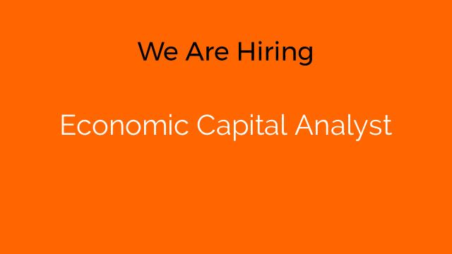 Economic Capital Analyst