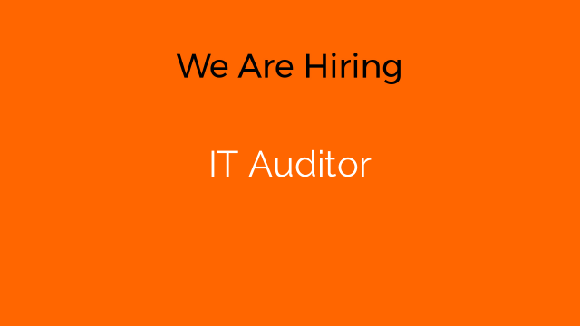 IT Auditor