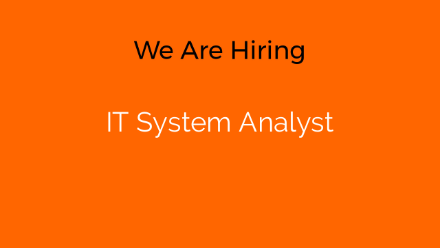 IT System Analyst