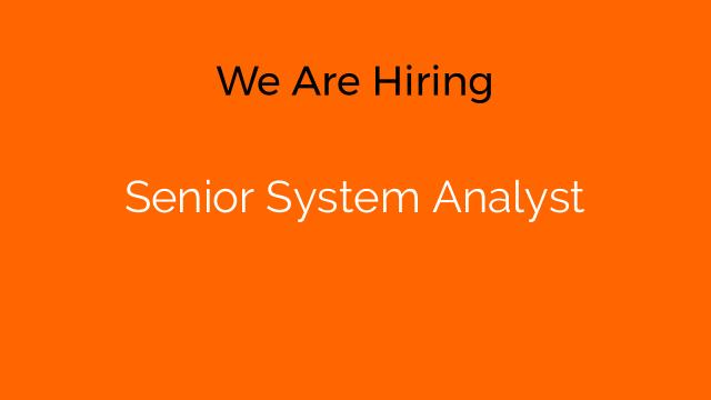 Senior System Analyst