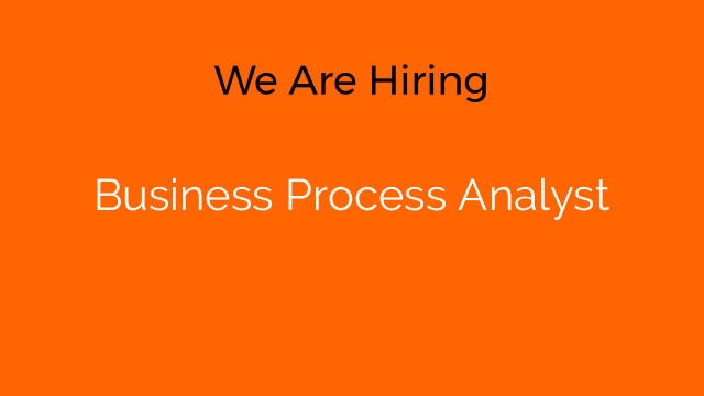 Business Process Analyst