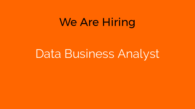 Data Business Analyst