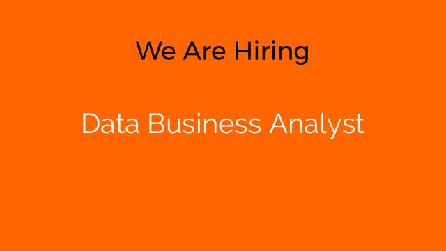 Data Business Analyst
