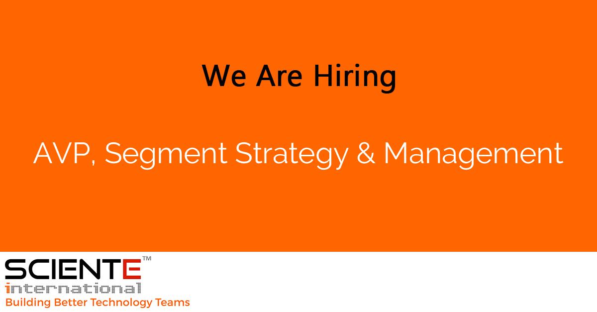 AVP, Segment Strategy & Management