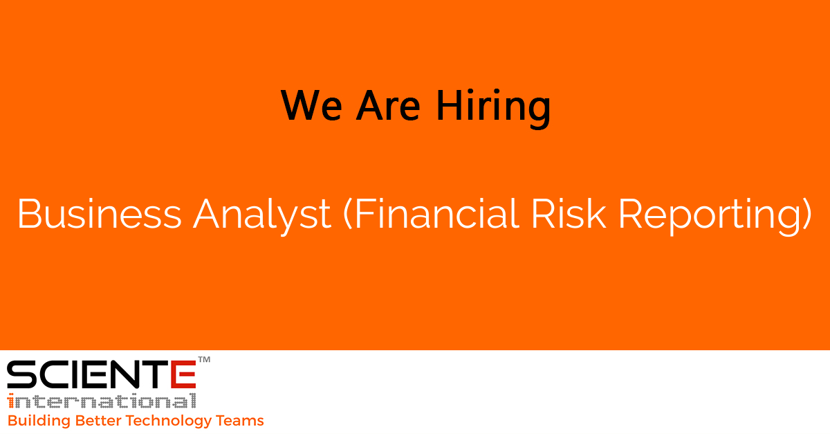 Business Analyst (Financial Risk Reporting)