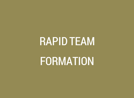 Rapid IT Team Formation Services