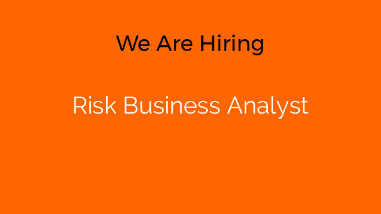 Risk Business Analyst