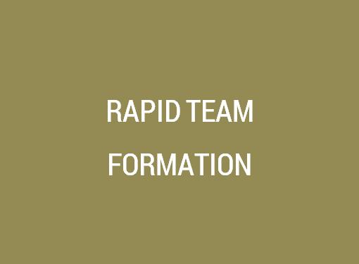 Rapid Team Formation
